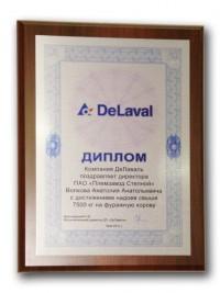 Наградной диплом от компании