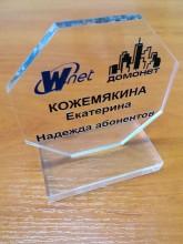Акриловый приз «Wnet»